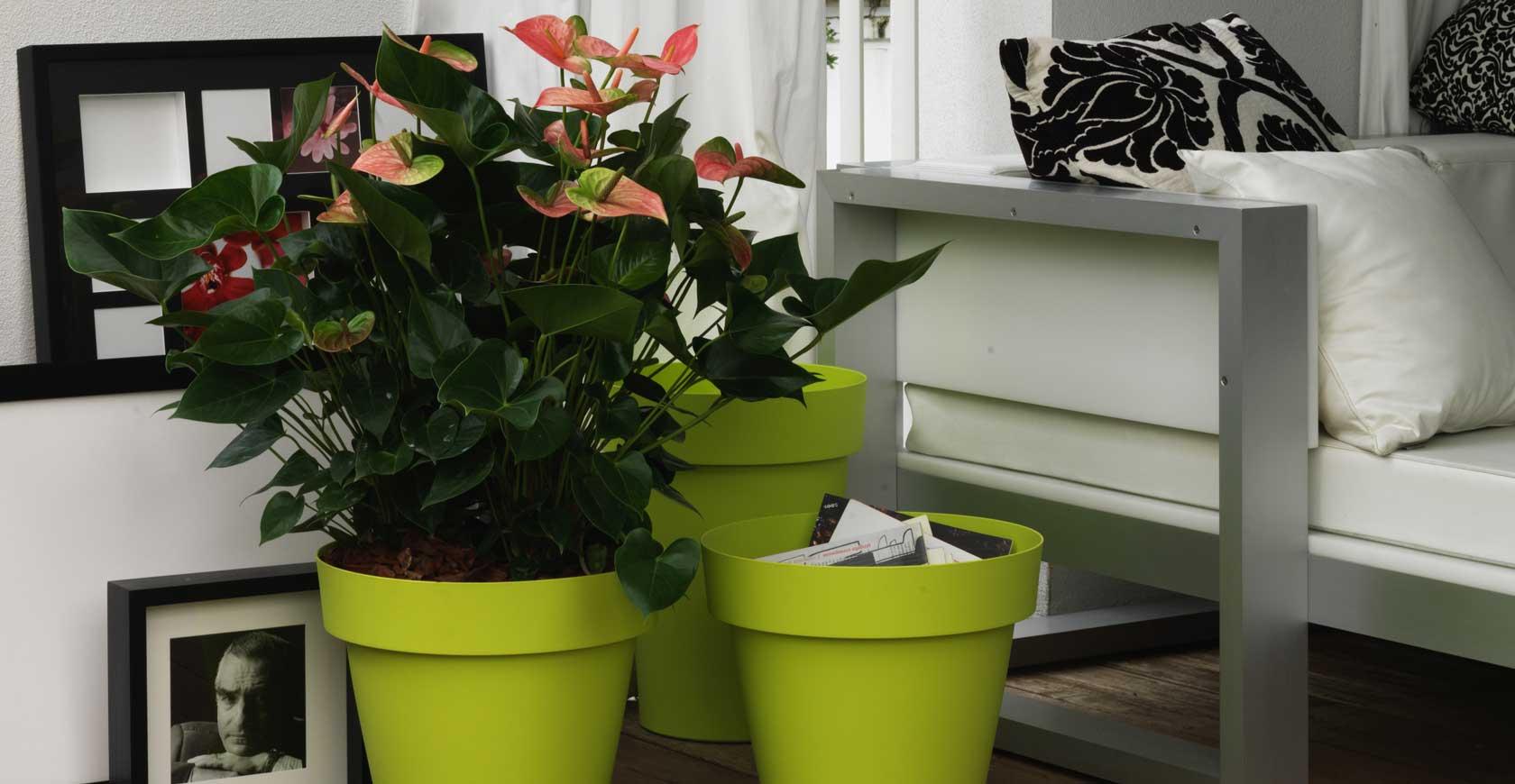Produttori Vasi In Plastica.Plastecnic Creativi Per Natura
